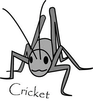 Pet - cricket B&W.png