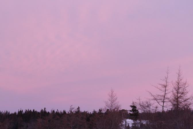 north sunrise