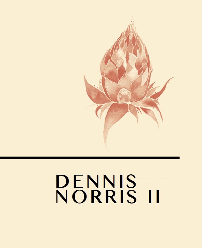 T Kira - Dennis Norris II