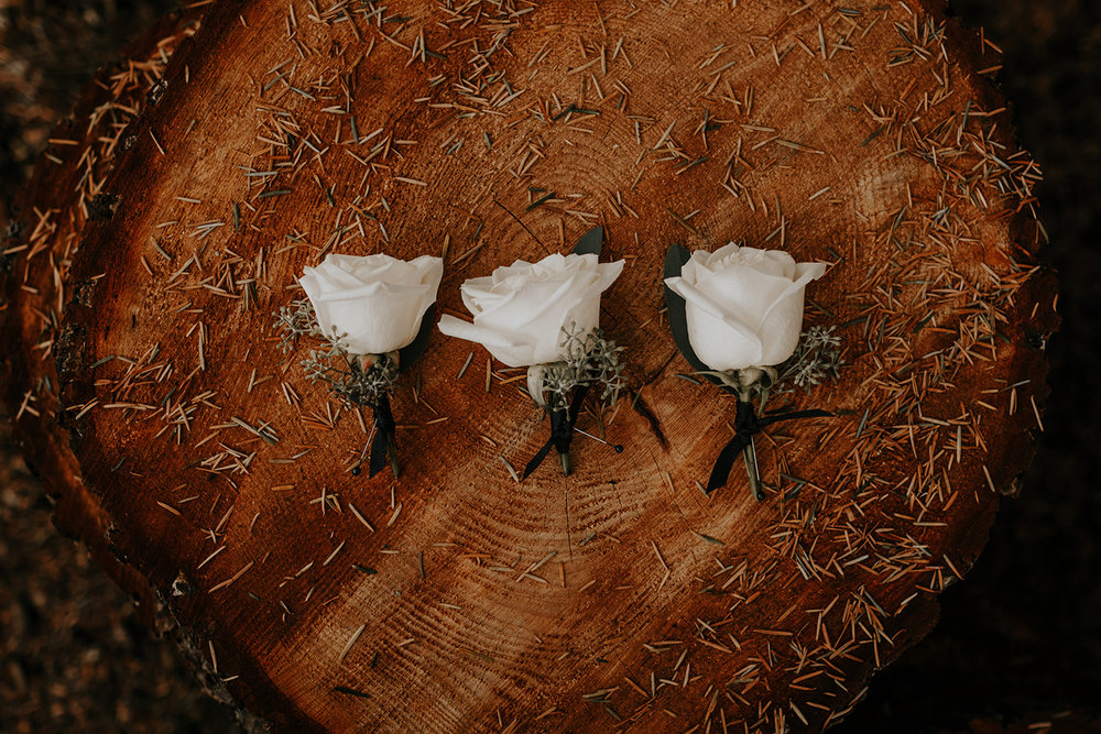 ginapaulson_camiryan_wedding-11.jpg