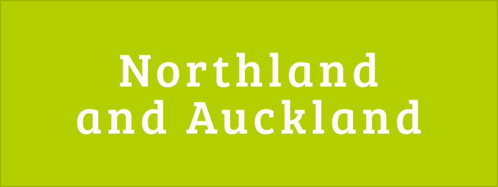 Northland and Auckland Areas for Disability Information Button