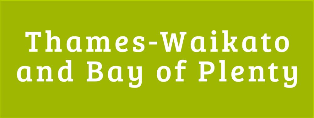 Thames Waikato Bay of Plenty Disability Information Centres Button