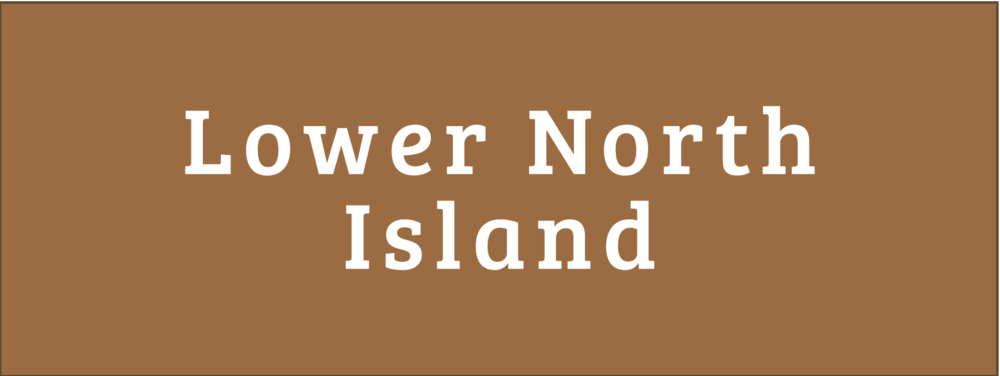 Lower North Island Disability Information Centres Button