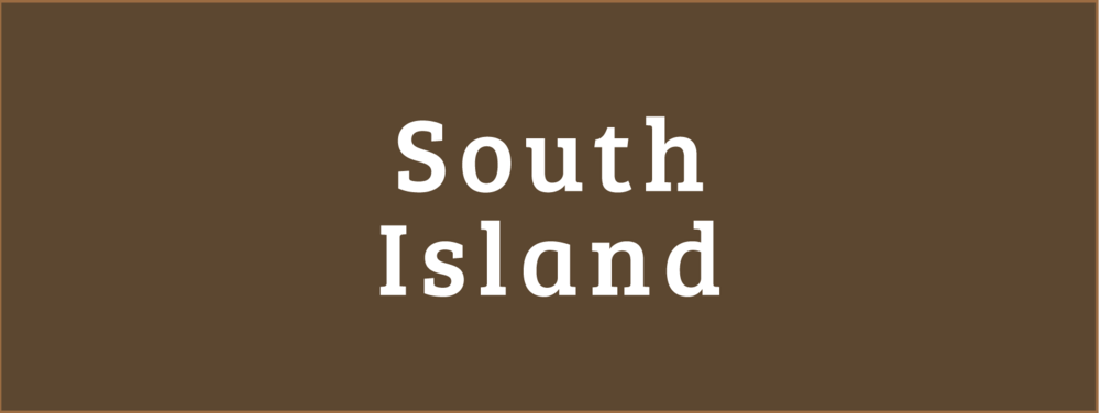 South Island Disability Information Centres Button