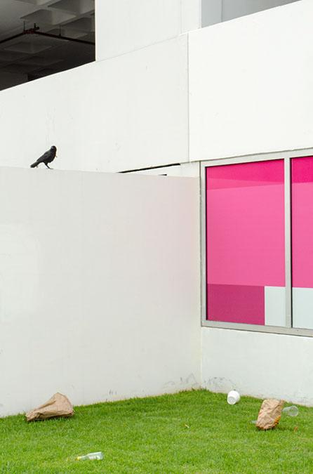 Los Angeles, CA,Izaak Schlossman
