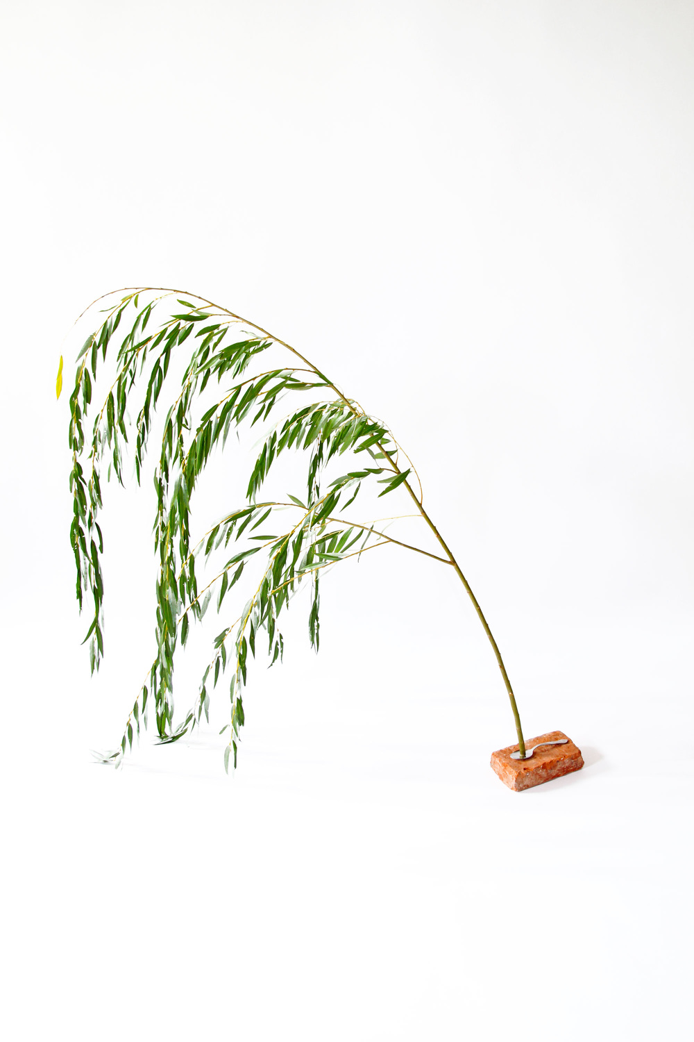 Brick Spoon Willow.jpg