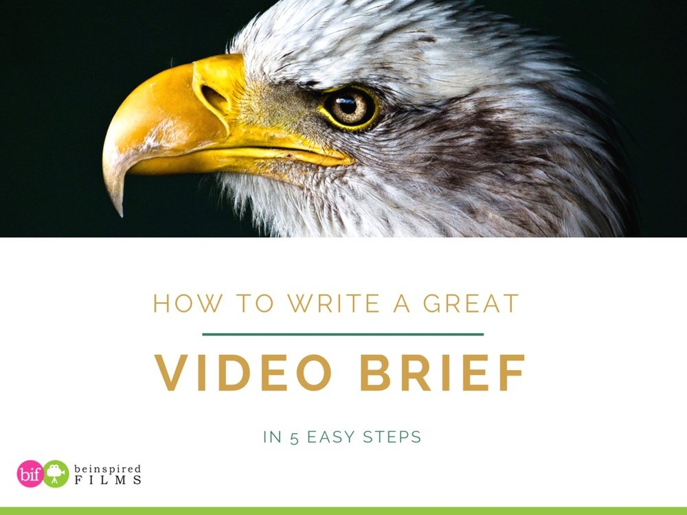 How+to+Write+a+Great+Video+Brief+in+5+Easy+Steps.001.jpg