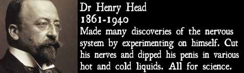 henryhead.jpg