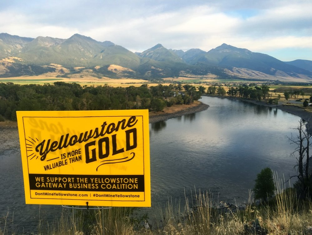 A Business Coalition sign on the Yellowstone River, north of the park in the Paradise Valley. Business owners here are banding together to oppose two gold mines. We stand with them! (Photo GYC.)