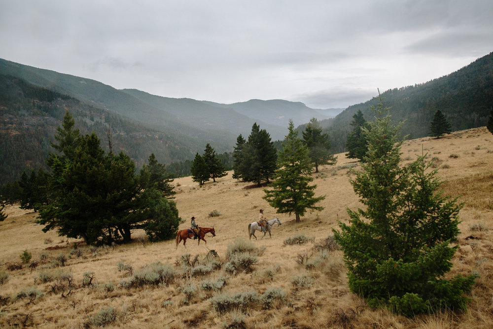 Horseback riders in Montana's Gallatin Range. (Photo Louise Johns.)