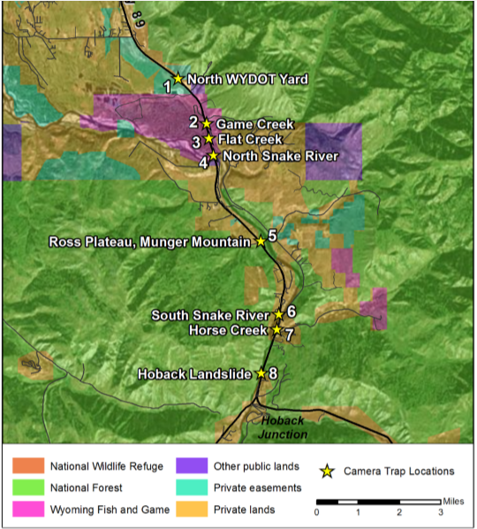 Wyoming breaks ground on underpasses for Jackson Hole wildlife ...