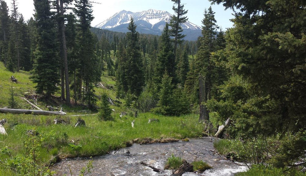 Big Sky waters we're working to keep cold and clean: Upper Jack Creek in Montana's Madison Range. (Photo GYC.)