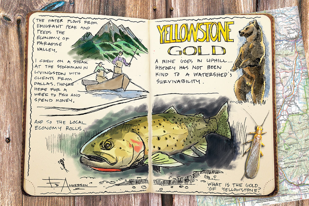 Ed Anderson's gorgeous illustration showing what's at stake on the Yellowstone was also featured in The Drake. (Courtesy Ed Anderson.)