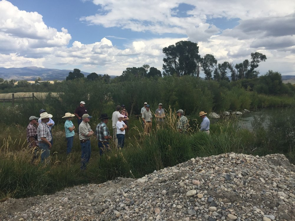 A group tours Clear Creek in the Ruby Valley to learn about the importance of riverbanks back in 2017. (Photo GYC.)