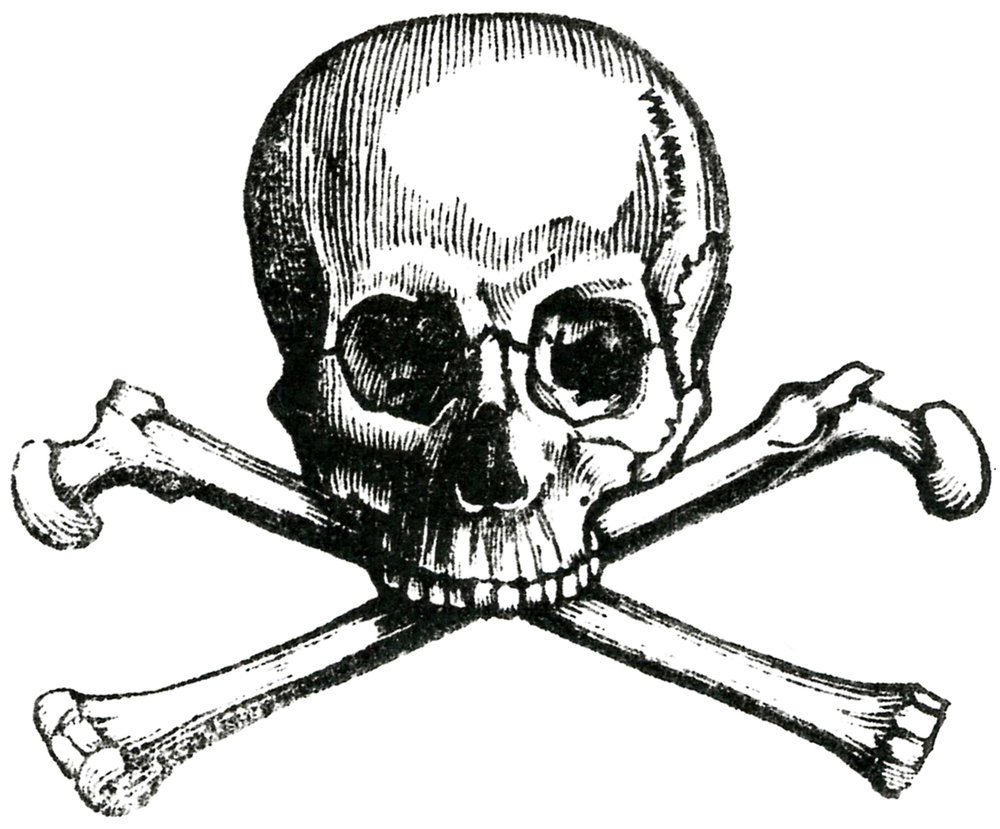 Early-Skull-Image-GraphicsFairy.jpg