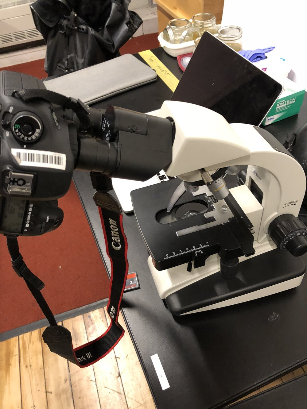 Canon mounted on microscope