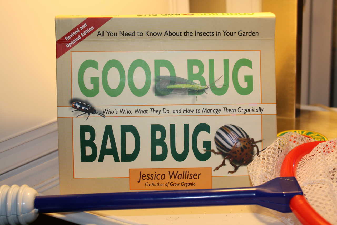 Good Bug, Bad Bug Book