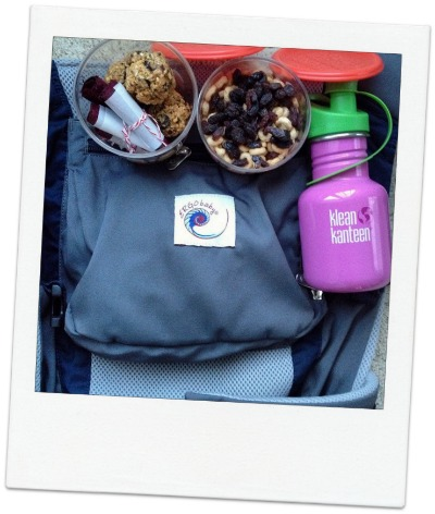 Snacks for hiking (and thoughts on picky eating) via yummytoddlerfood.com