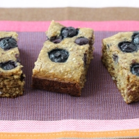 Blueberry Date Bars