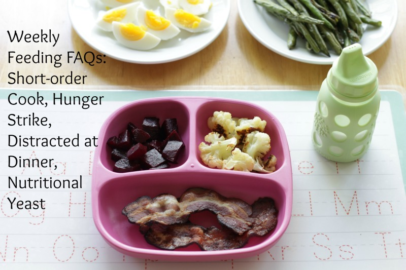 Feeding Toddler FAQs via yummytoddlerfood.com