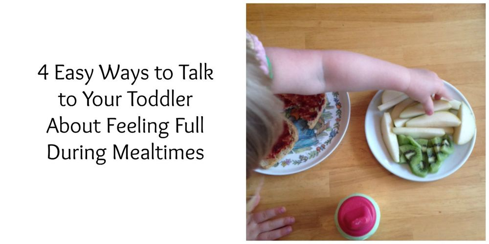 How to Talk To Your Toddler About Feeling Full (yummytoddlerfood.com)