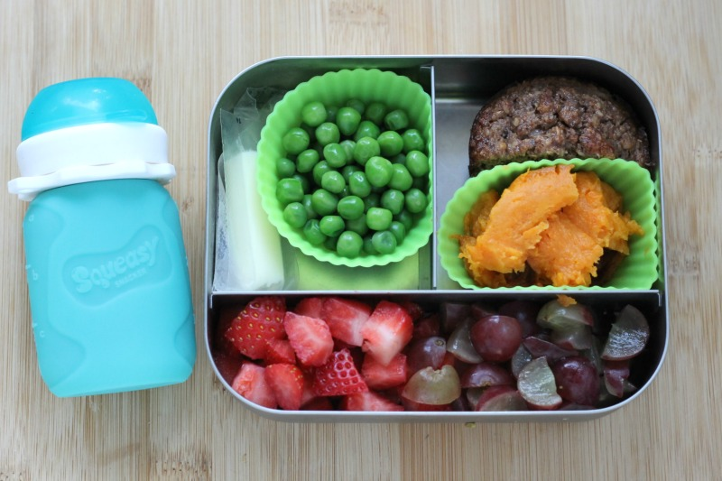 Simple Packed Toddler Lunch
