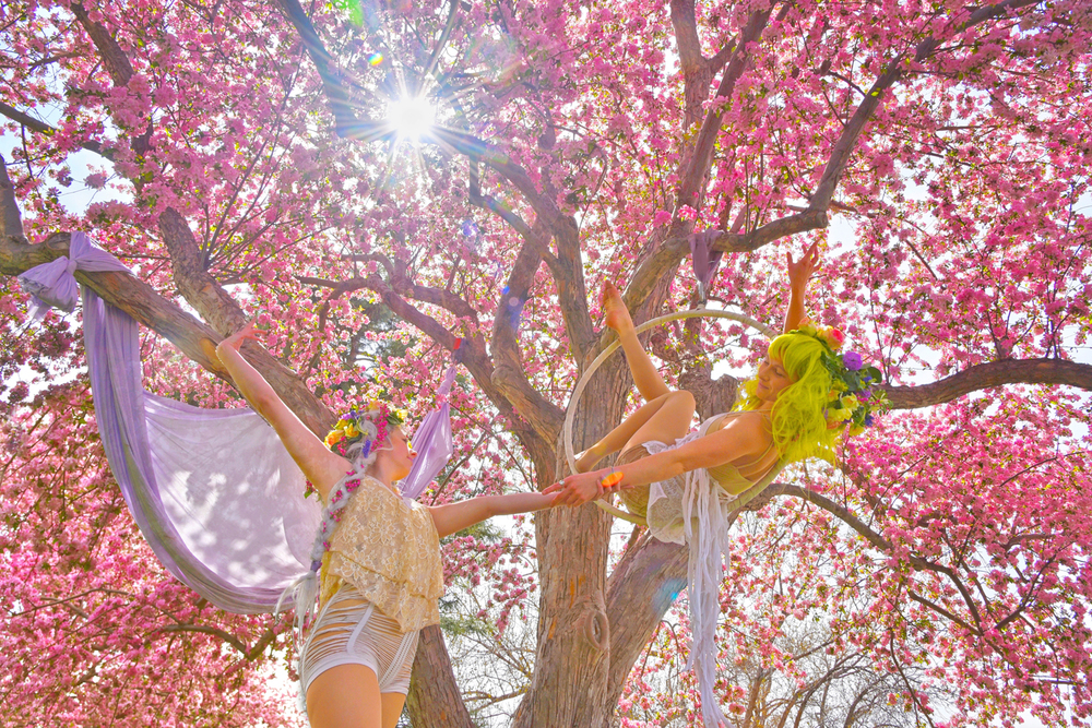 Fairy-Tale-Blossoms-Faeries_Carly-Carpenter.jpg