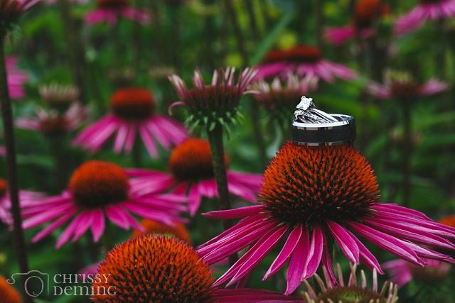 morton_arboretum_wedding_photography_0054.jpg