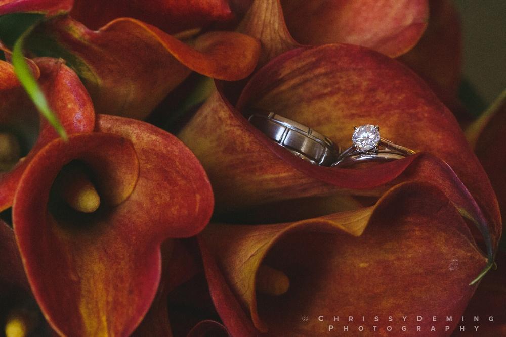 dekalb_wedding_photographer_0004.jpg