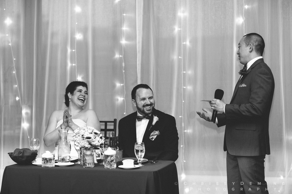 naperville wedding photographer_0034.jpg