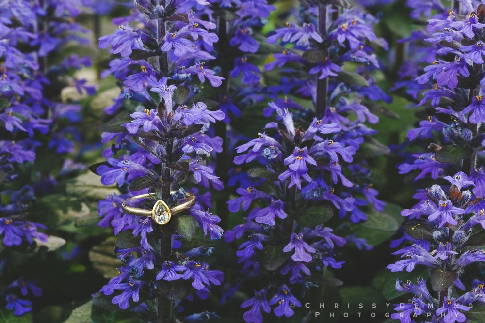 klehm_arboretum_wedding_photograper_0089.jpg