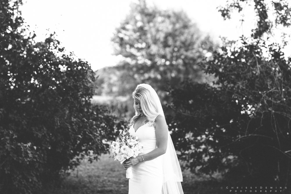 rosewood_delavan _WI_ wedding_photographer_0040.jpg