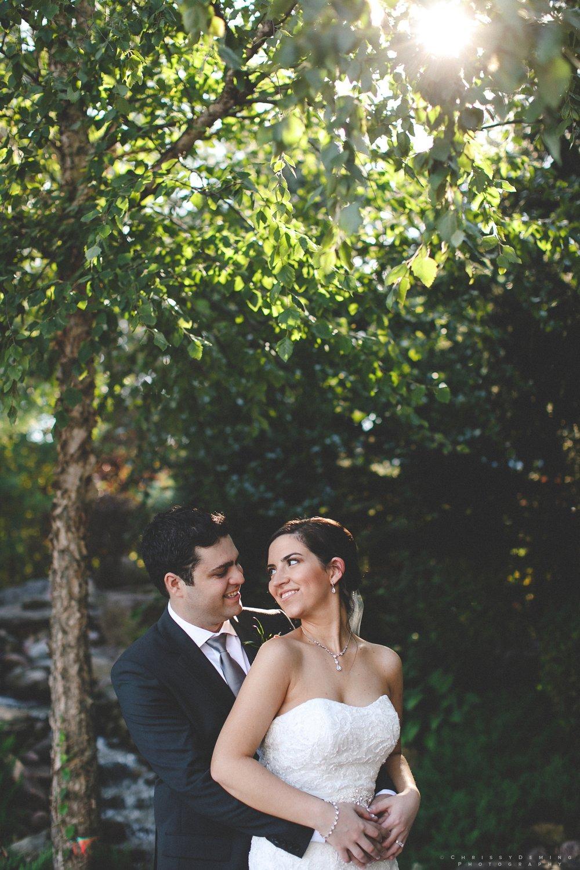 CDandME_frankfort_IL_wedding_photography_0040.jpg