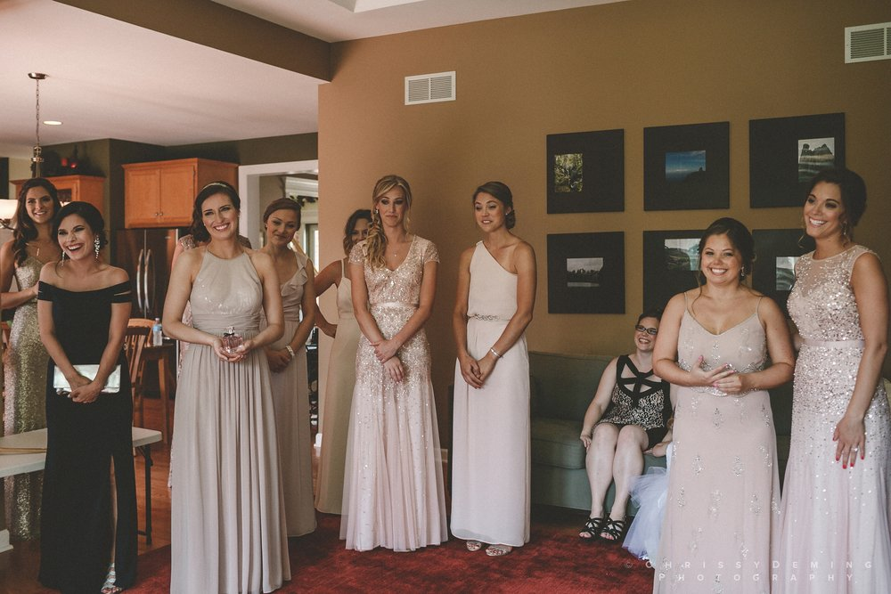 naperville_wedding_photography_chrissy_deming_0014.jpg