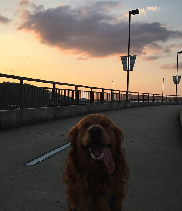 Sunset walks with my boo thang