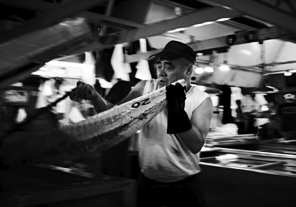 Tsukiji_08_10_09_-009635.jpg