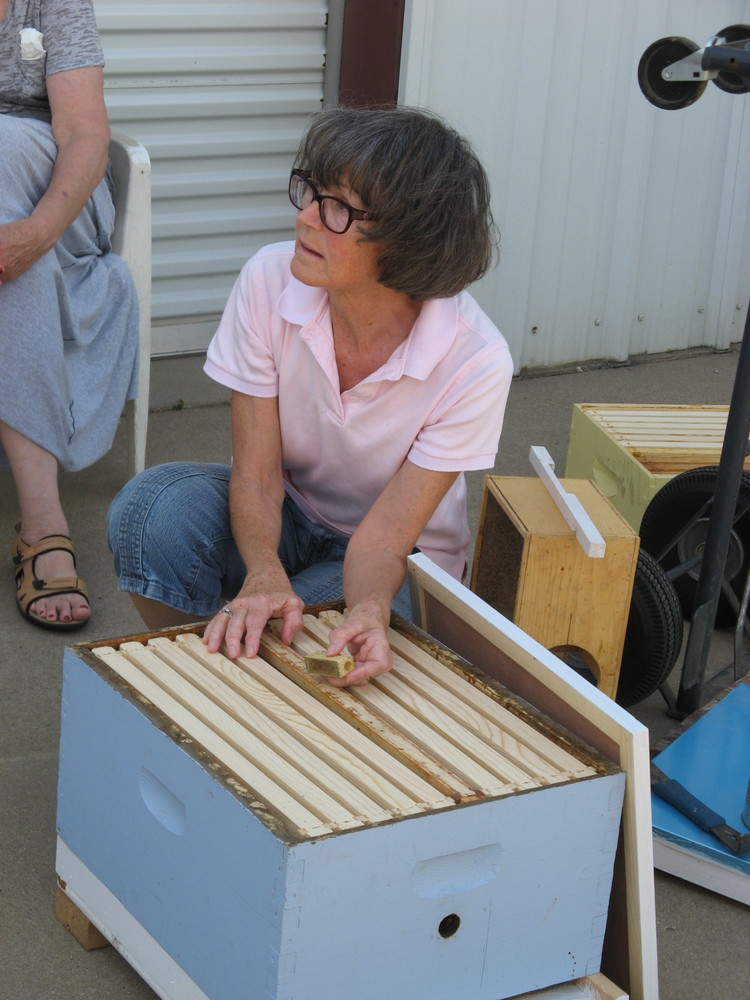 Deb showing us the separate box the queen bee comes in.