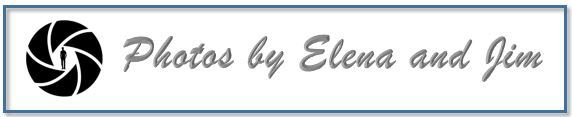Elena Thornton Logo.jpg