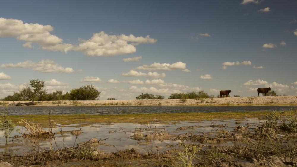Estrella Ranch.00_01_42_30657.Still049.jpg