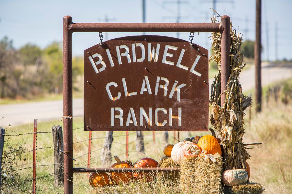 Birdwell_Clark-Ranch_24.jpg
