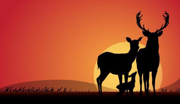 Wildlife-Valuation.jpg