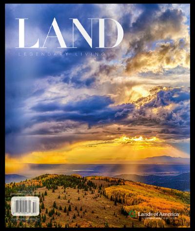 LAND Winter 2015 _web.png