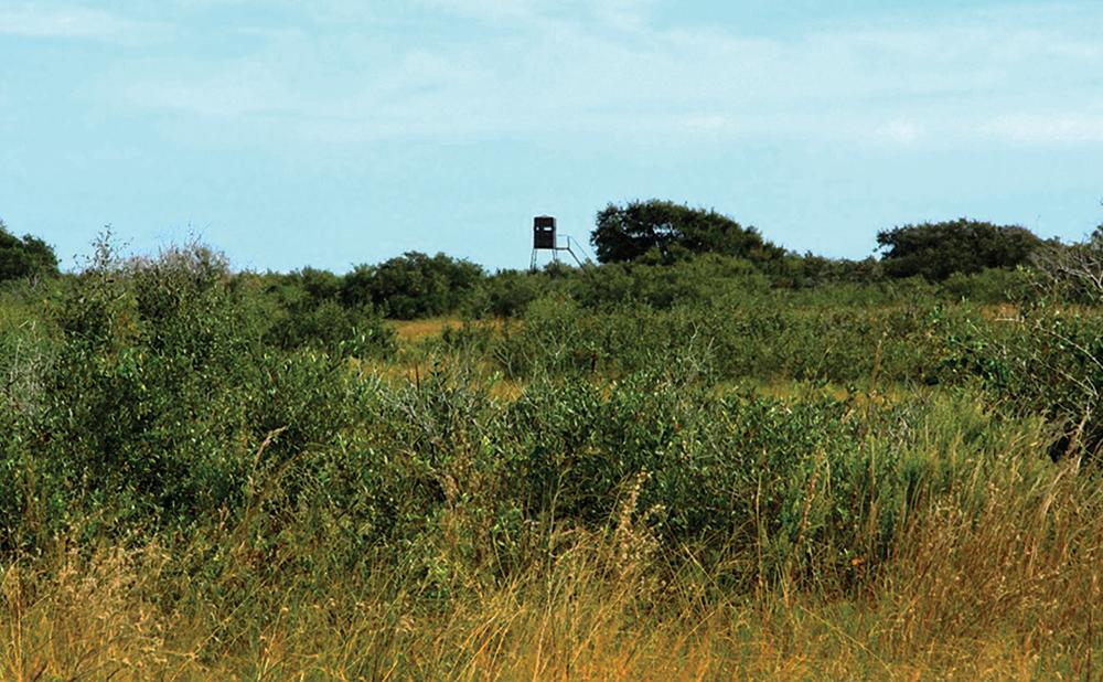 Preserve-at-LaSalle-Ranch-1.jpg