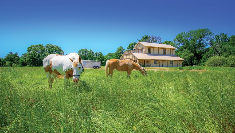 Old-11-Ranch-(1)-EDIT.jpg