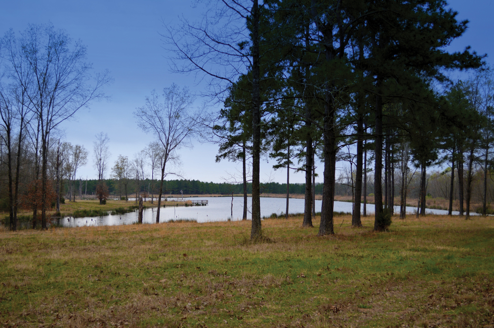 RECREATIONAL PARADISE 873.42± Acres | Red River County | Texas Property ID: 3078190 | $2,180,000