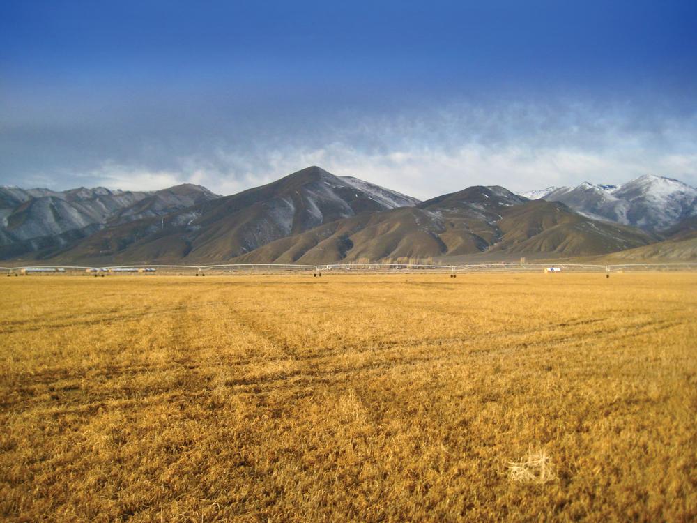 Big-Creek-Ranch-(12)-EDIT.jpg