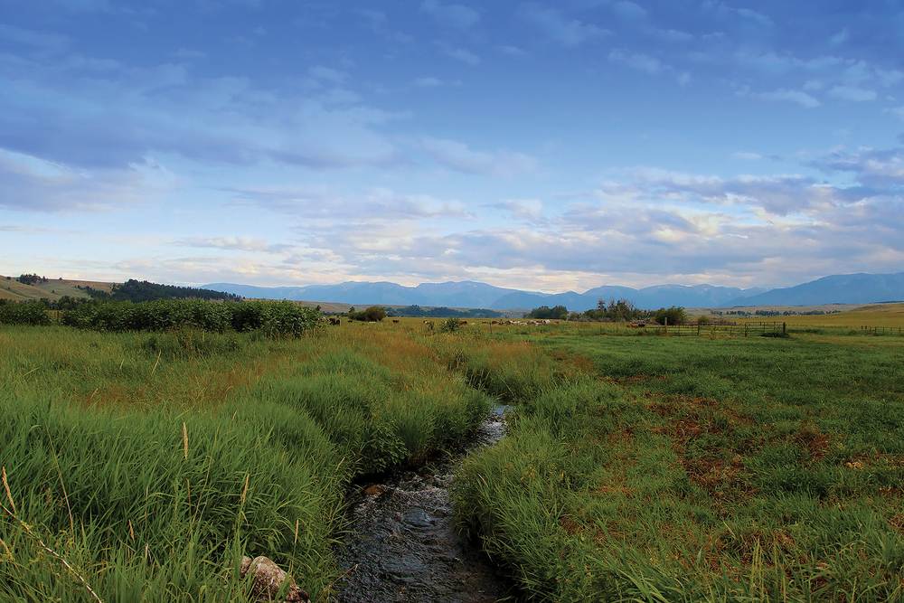 HAMMOND RANCH 688± Acres | Fishtail, MT Property ID: 2872409 | $2,250,000