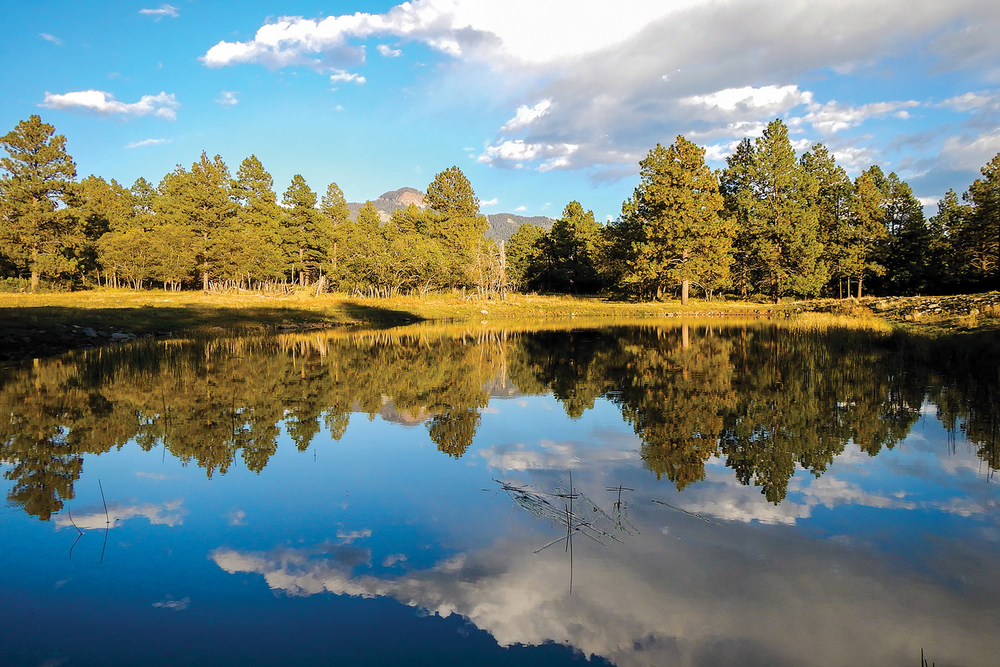 POWDER KEG RANCH 463± Acres | Pagosa Springs, CO Property ID: 2872392 | $2,990,000