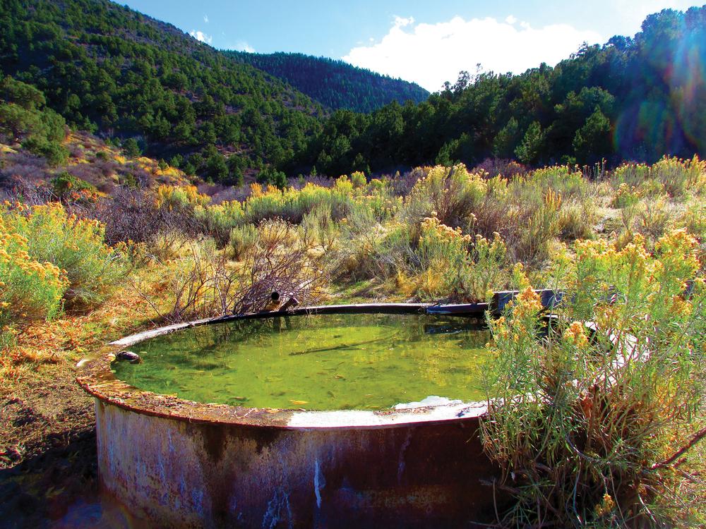 Spring-Creek-5-EDIT.jpg