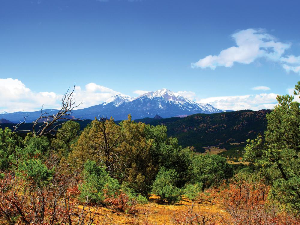 APISHAPA RIVER ELK RANCH 350± Acres |Las Animas County |Colorado |Property ID: 3193839 |$685,000